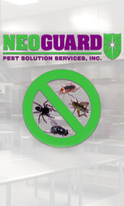 neoguard-img-pesttreatment